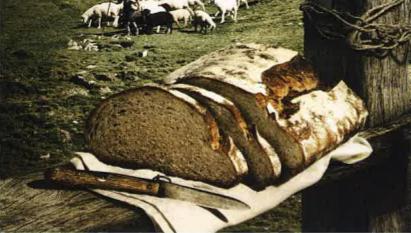 Le pastourneau 1