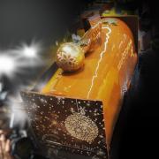 Bûche Douceur d'Abricot
